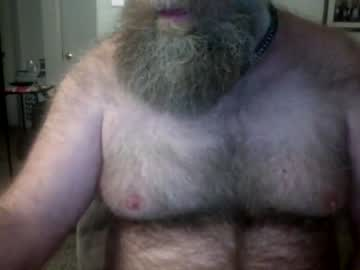 [16-02-21] bearballer1976 webcam show from Chaturbate.com